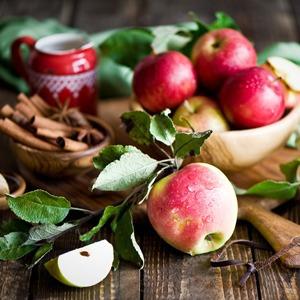 «День яблок», Международный Медиа Форум, выставка Майи Зак в «Тайге» и еще 17 событий — Гид The Village на The Village