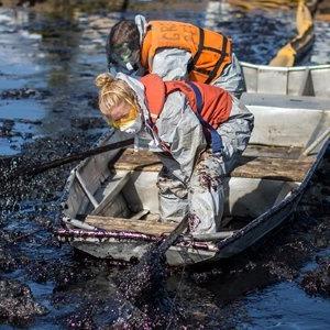 Как леса Коми очищают от нефти — Фоторепортаж на The Village