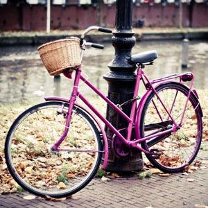 В Петербурге появятся бесплатные общественные велосипеды — Велосипеды на The Village