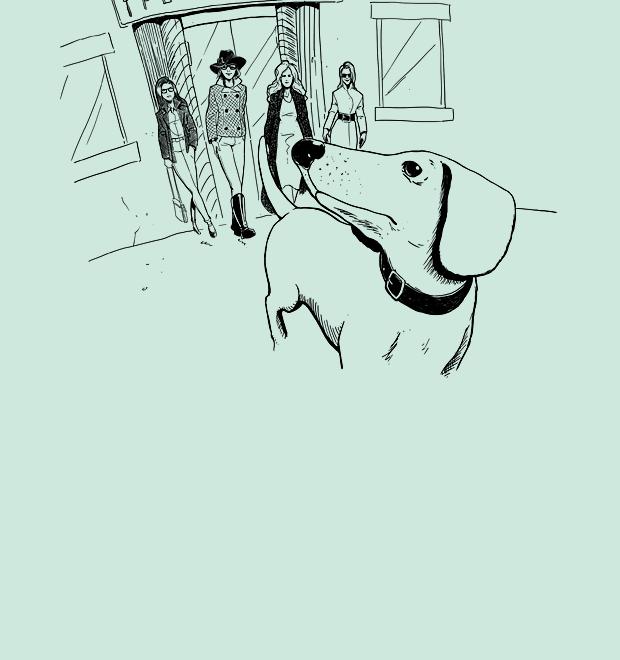 Эксперимент The Village: Куда пускают с собакой? — Рестораны на The Village