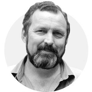 Комментарий: Владимир Кревер о нашествии насекомых