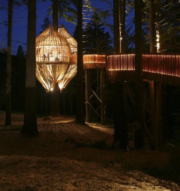 Дизайн от природы: Ресторан-кокон и «тунцовая» электростанция  — Дизайн от природы на The Village