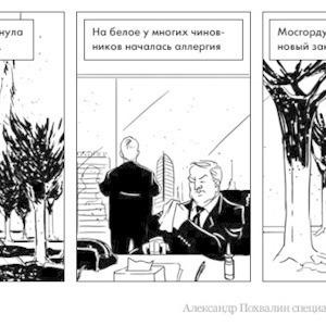 Постскриптум: Москва борется с тополиным пухом — Комикс на The Village
