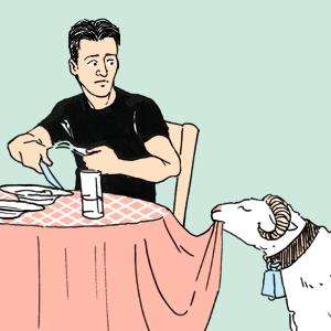 Есть вопрос: «Можно ли держать животных в ресторане?» — Есть вопрос на The Village