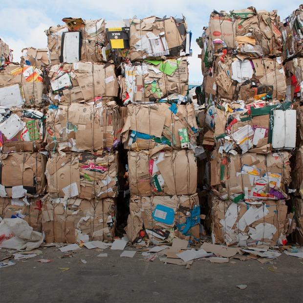 Год макулатуры: Что происходит с книгой, которую вы выбросили