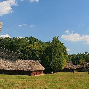 В «Пирогово» появятся точки быстрого питания — Ситуация на The Village