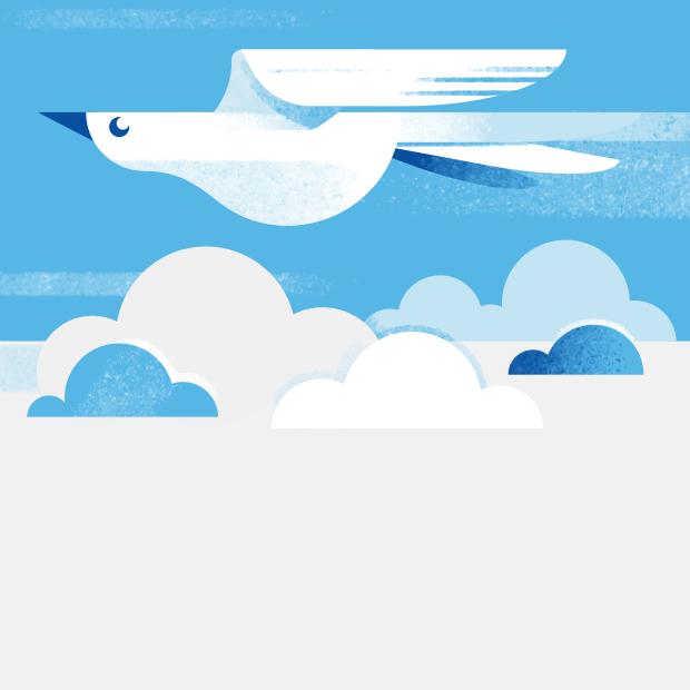 Какова высота птичьего полёта?