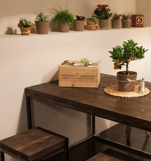 Новое место: Кафе-бар «Картофель с грибами» — Новое место на The Village