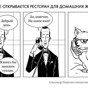 Постскриптум: Московский ресторан для животных