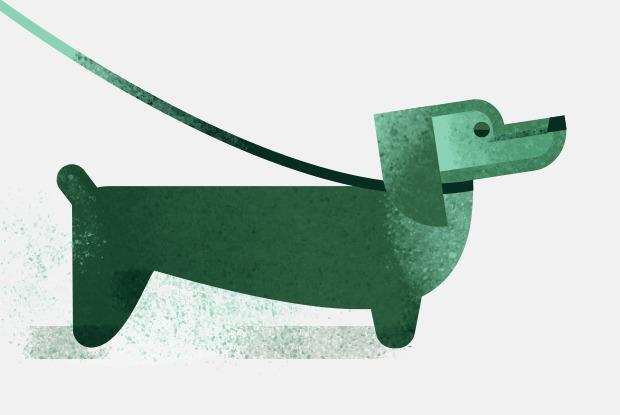 Откуда берутся классические клички животных? — Есть вопрос translation missing: ru.desktop.posts.titles.on The Village