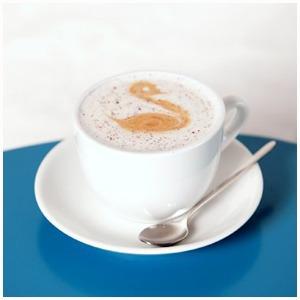 Пивная Brasserie belge 0.33, кофейня Double B на Большой Дмитровке, кулинария Organic Store — Открытия недели на The Village