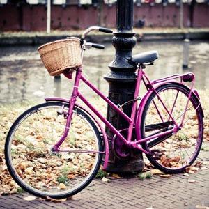 В Петербурге появятся бесплатные общественные велосипеды — Цепная реакция на The Village