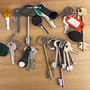 Бюро находок: вещи, забытые в Новой Голландии — Ситуация на The Village