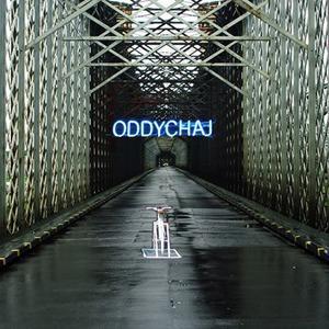 Польское современное искусство покажут в Rizzordi Art Foundation