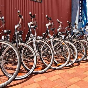 Городские байки: 4 новых велопроката в Петербурге — Цепная реакция на The Village