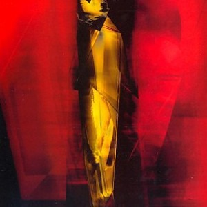 Выставка Кристиана Шютца открылась в Мраморном дворце — События на The Village