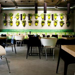 Новое место: Вегетарианское кафе Fresh — Новое место на The Village