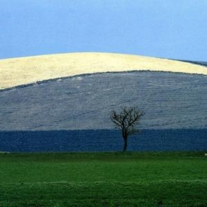 Выставку работ Франко Фонтаны покажут в «Росфото» — События на The Village