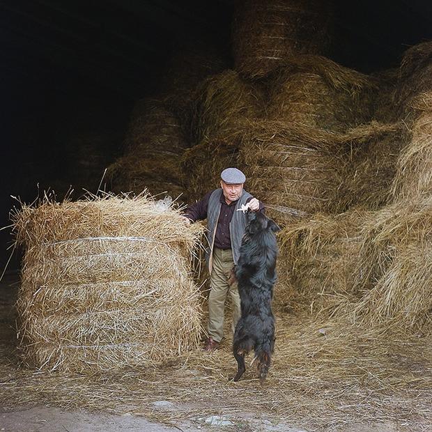 Лук, я твой отец: Как зарабатывают успешные фермеры