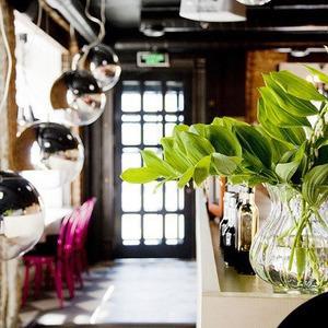 Новое место: «Бурый лис и ленивый пёс» — Рестораны на The Village