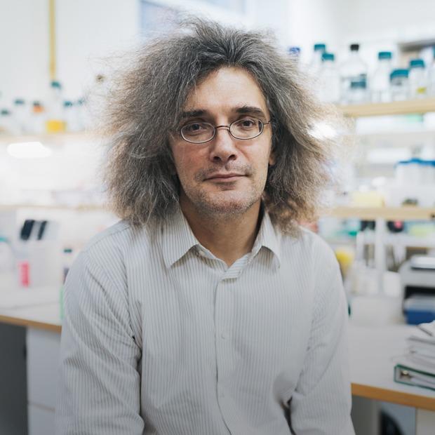 Молекулярный биолог Константин Северинов — о редактировании генов — Что нового на The Village