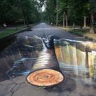 На асфальте в городских парках нарисовали 3D-картины