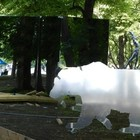 В парке Горького появится снежная дорожка