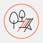 Фирменный стиль и логотип парка «Зарядье»