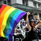 Смольный согласовал митинг гей-активистов в Полюстровском парке вместо центра города