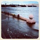 Шторм в Петербурге в снимках Instagram
