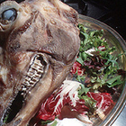 6 самых страшных блюд мира