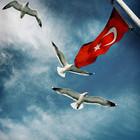 Эклектичный Стамбульский микс