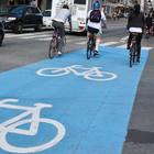 Схему велодорожек в Петербурге отправят на рассмотрение в Смольный
