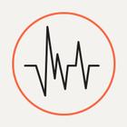 Землетрясение в Калифорнии: Реакция пользователей социальных сетей