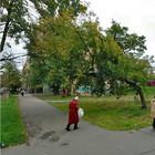 В Петербурге появится сквер имени Виктора Цоя