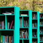 Открытые библиотеки появятся на остановках транспорта и в метро
