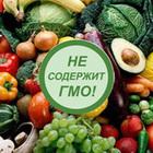 ГМО: есть или не есть?