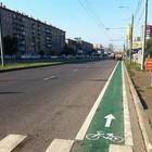 У метро «Университет» появились первые велополосы