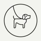 В парке «Фили» пройдёт выставка бездомных собак «Приюти друга»