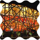 Дизайн от природы: «Зеленое» топливо и олимпийский стадион в Пекине