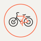 Петербург присоединится к акции «На работу на велосипеде!»