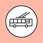 Маршрутки в Москве заменят низкопольными автобусами