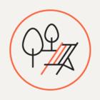 МЧС организует в Петербурге 25 площадок для запуска фейеверков