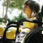 В Ботаническом саду появится Сад ощущений для инвалидов