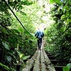 Психопрофилактические путешествия в ЮА (Перу.Эквадор)