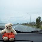 Южный остров Новой Зеландии через лобовое стекло
