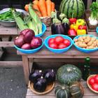 В Петербурге пройдет международный День без мяса