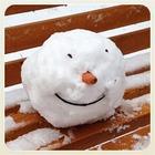 Первые снеговики в снимках Instagram