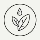 В Ботаническом саду создадут оранжерею с полярными растениями