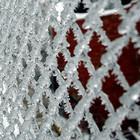 Ледяной дождь в Подмосковье нанес ущерб в 200 млрд рублей